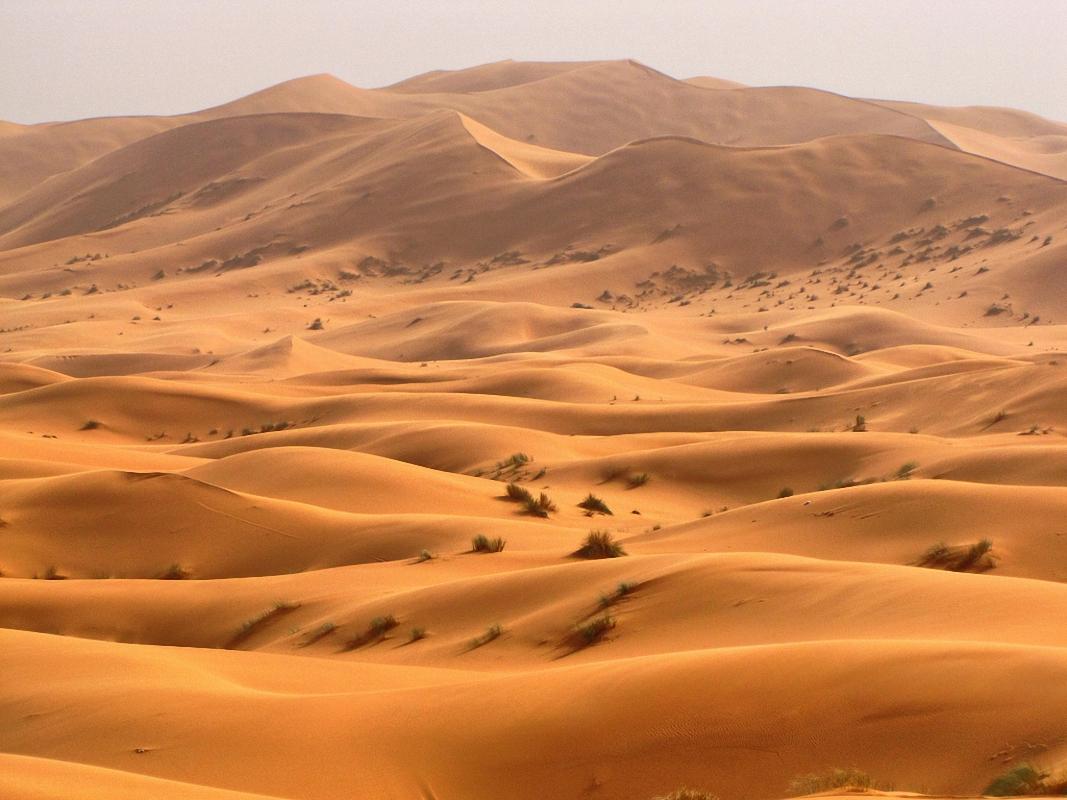 Фото у далекій пустелі 2 фотография